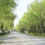 What to see in Beijing (part 2)