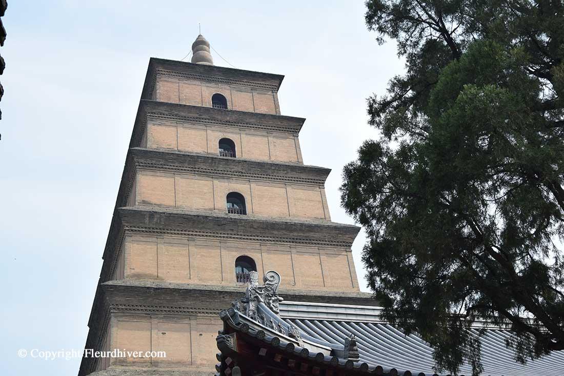 wild goose pagoda xian