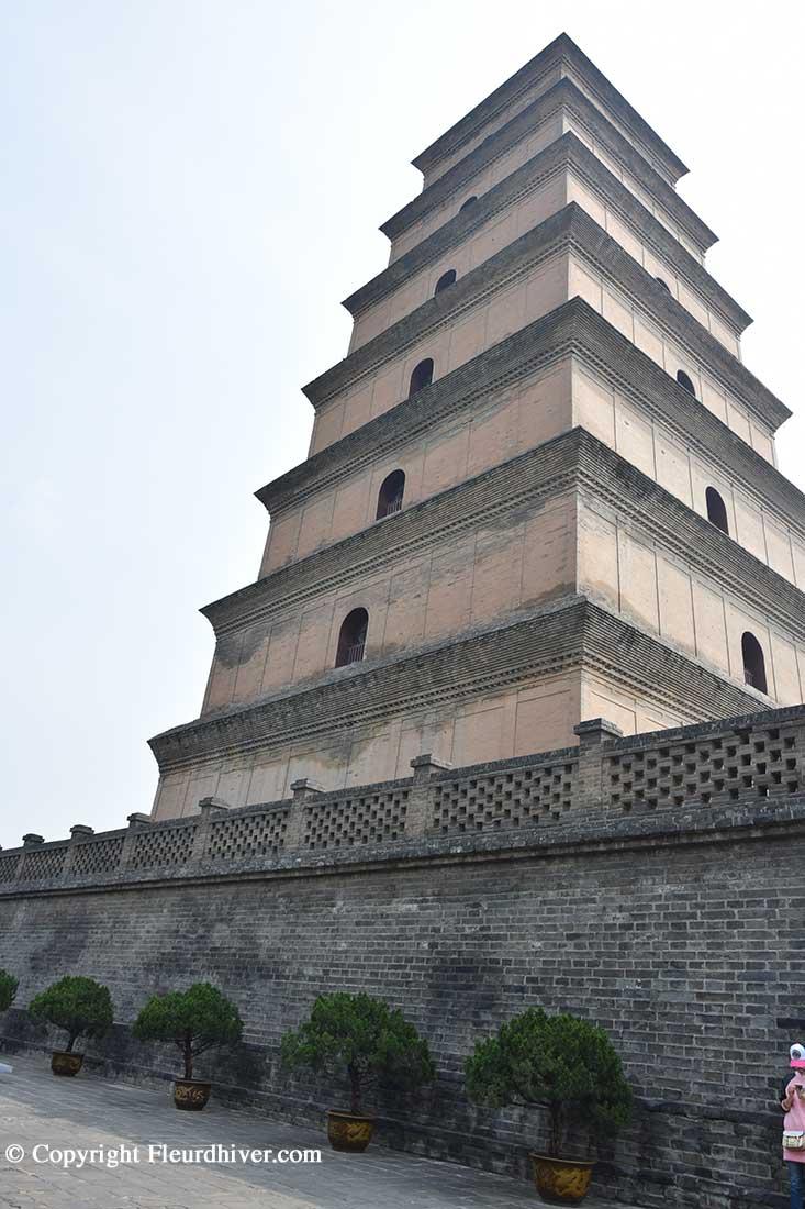 pagoda oca selvatica xian