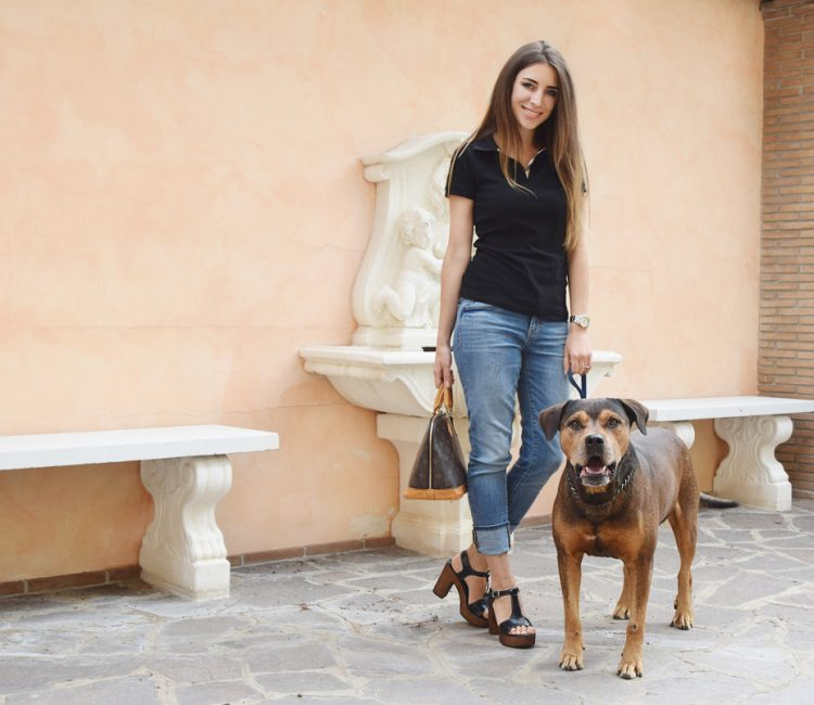 model-dog-instagram