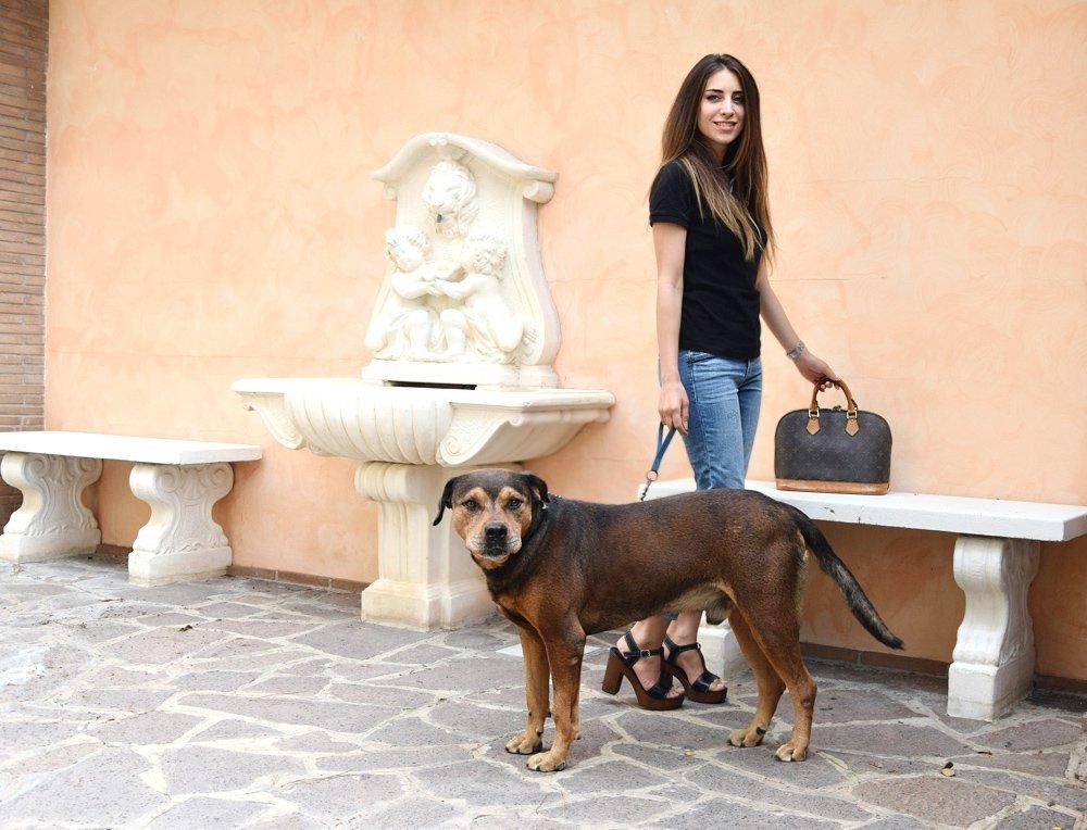 model-dog